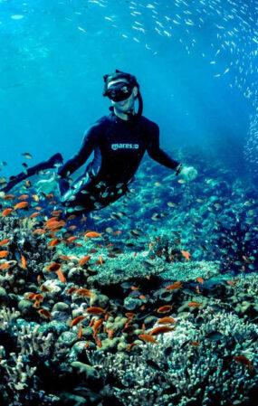 serv_Diving_1